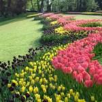 Primavera en Bruselas: Agenda cultural